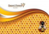 pic of honeycomb  - Vector Abstract Honey Background with Honeycomb - JPG