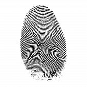 stock photo of fingerprint  - Fingerprint vector isolated on white background - JPG