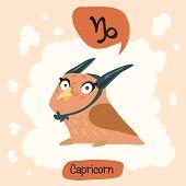 foto of capricorn  - Colored cute owl horoscope - JPG