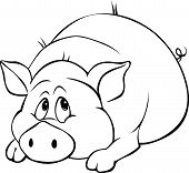 foto of pig  - pig cartoon laying isolated on white background  - JPG