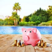 picture of sand dollar  - Piggy bank on beach background - JPG