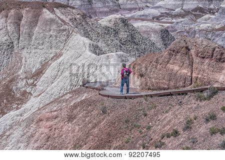 Woman Hiking Blue Mesa At The Petrified Forest