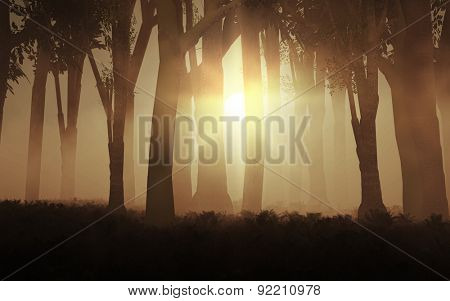 3D render of the sun shining through a foggy forest