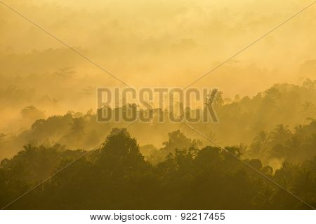 Beautiful misty sunrise on tropical forest mist in Indonesia
