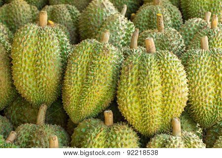 Tasty durian fruits on the market
