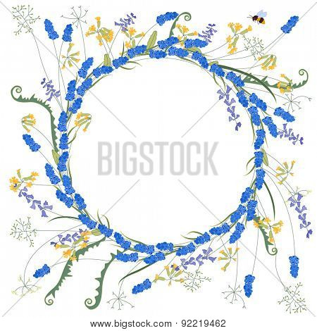 Detailed contour wreath with muscari and primrose flowers isolated on white. Round frame for your design, greeting cards, announcements, posters.