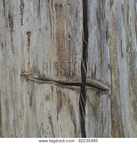 Trunk Of An Old Tree With Cross