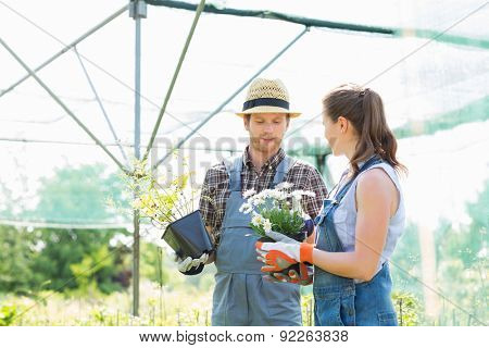 Gardeners discussing over flower pots at greenhouse