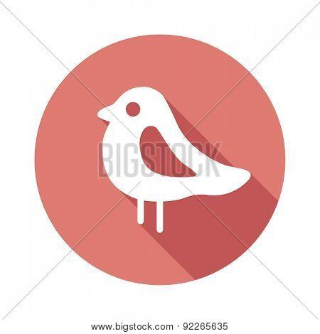 Bird Flat icons.Vector