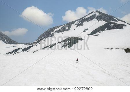 Rear View Of Skier Walking Through Snow Mountains, Japan