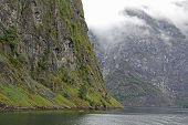 picture of greenery  - Kayaking in Norway - JPG