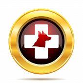 pic of veterinary  - Veterinary icon - JPG