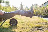 stock photo of wheelbarrow  - Low section of man relaxing in wheelbarrow at garden - JPG