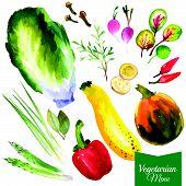 foto of bay leaf  - Watercolor vegetables and herbs - JPG