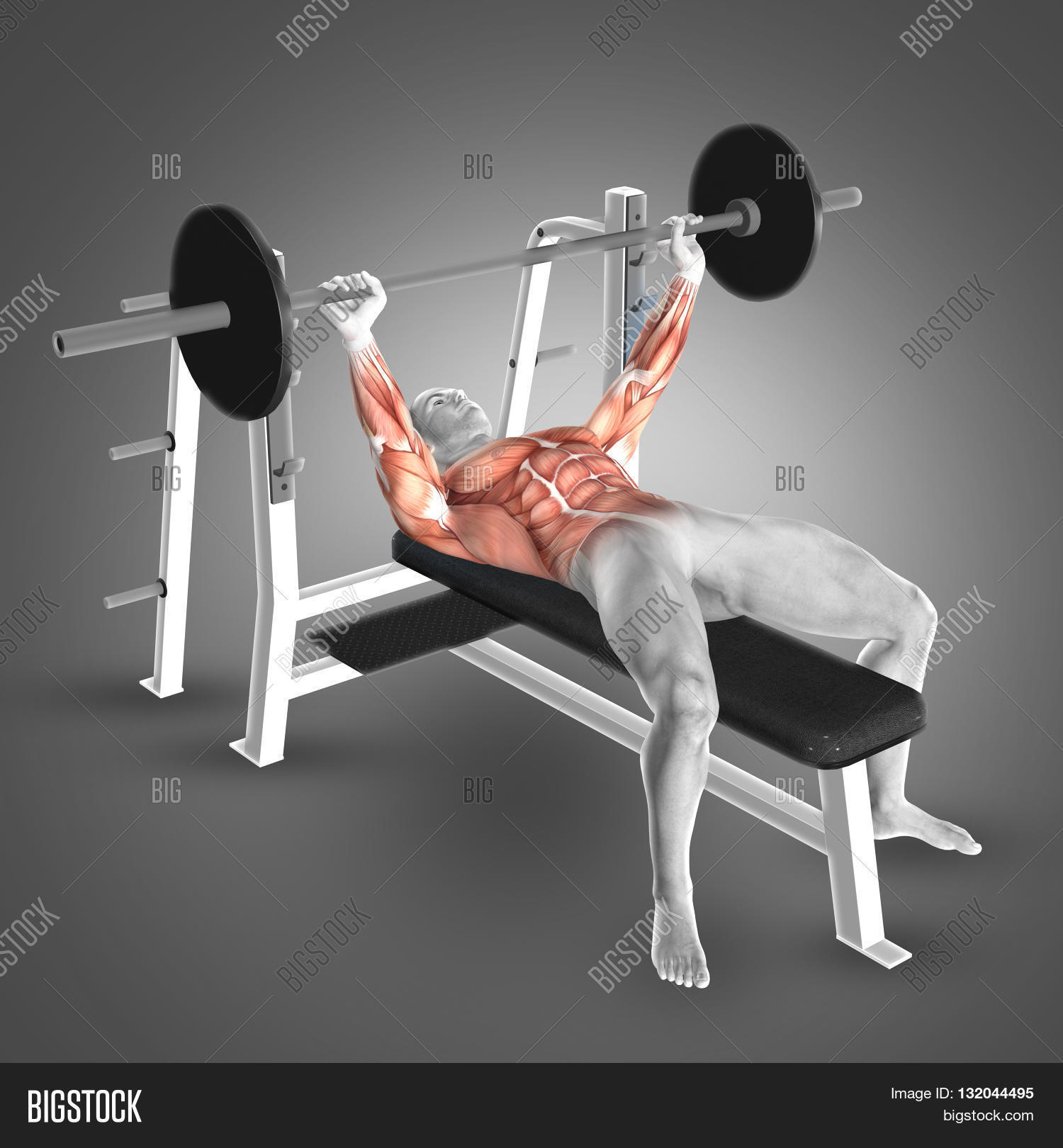 3d Render Male Figure Barbell Bench Image Photo Bigstock