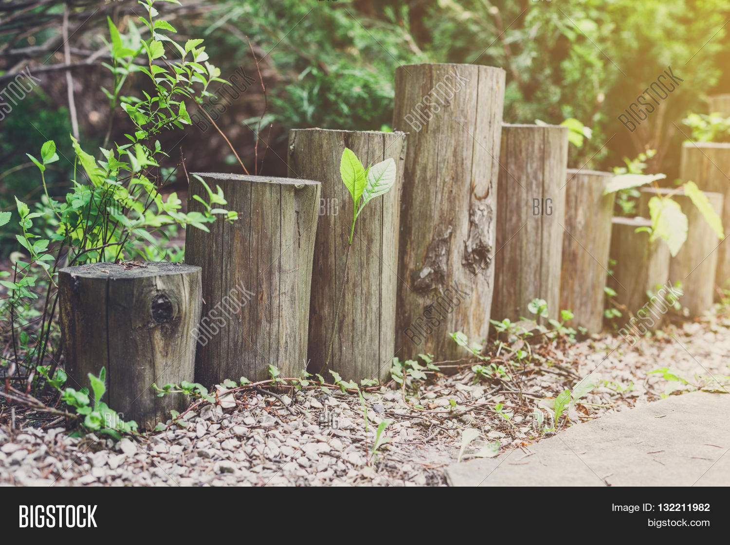 Landscaping With Wood Logs : Beautiful landscape design garden path tiles closeup with wooden log