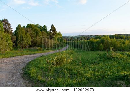 rural soil road passing through green forest