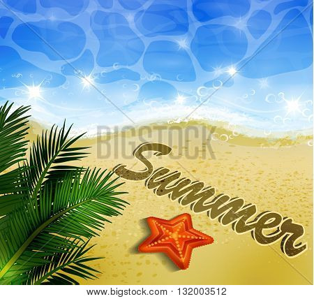 Beautiful beach top view with starfishes vector illustration and palm leaves