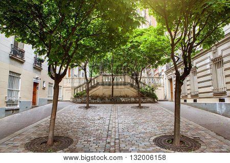 green trees on montmartre street in Paris,
