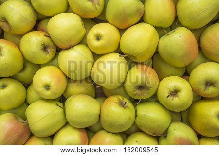 Background of fresh ripe green yellow apples