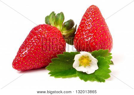 two strawberries with flower and leaves isolated on white background.