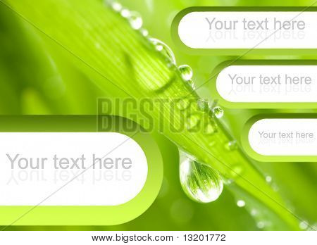 Fresh green grass with graphic elements on it (perfect to place text)
