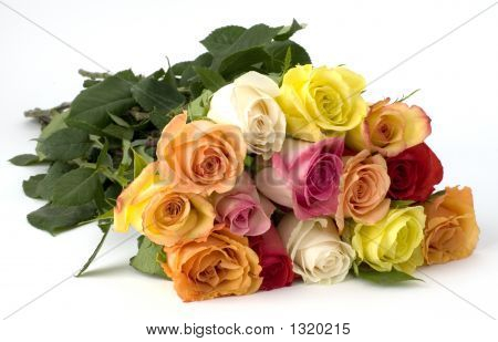 Dozen Mixed Long Stemed Roses
