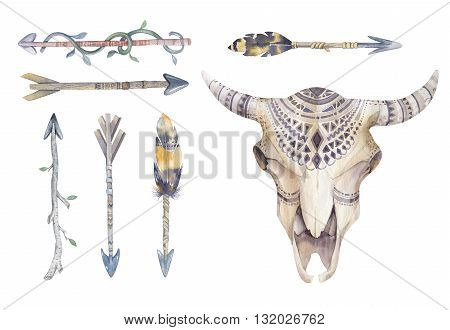 Watercolor cow skull with flowers , arrows and feathers. Boho tribal style bull design. American rustic indians bison head. buffalo illustration