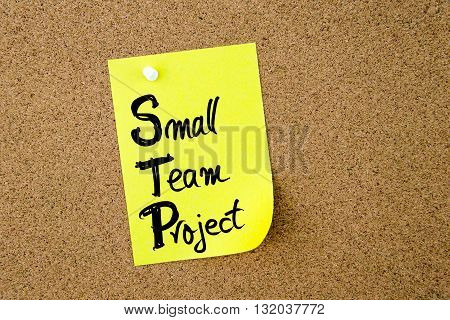 Business Acronym Stp Small Team Project