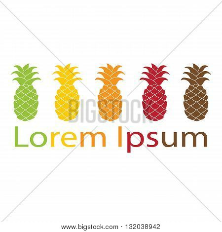 Pineapple logo element colorful flat design isolated on white background. Vector illustration. Green yellow orange red brawn silhouette.
