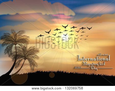 Vector illustration of Migratory birds day in sunset light