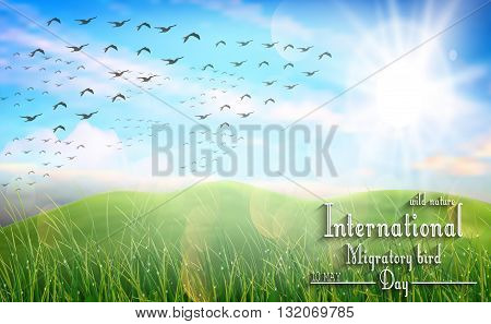Vector illustration of Beautiful spring meadow for Birds migratory day