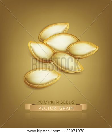 Vector pumpkin seeds