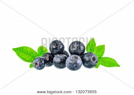Blueberry on white background with clipping path