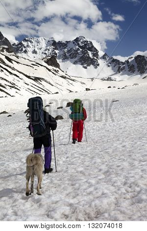 Dog and two hikers in snowy mountains. Turkey Kachkar Mountains (highest part of Pontic Mountains).