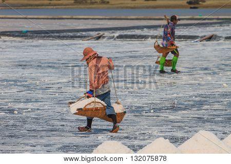 Salted worker in Thailand Salt in the Saline in rural Thailand
