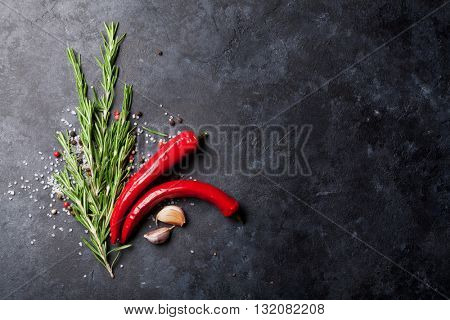 Spices and herbs over stone kitchen table background. Salt, pepper, rosemary, garlic, chili. Top view with copy space