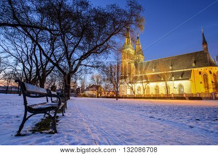 View of the Roman Catholic cathedral at night, Prague, Vysehrad