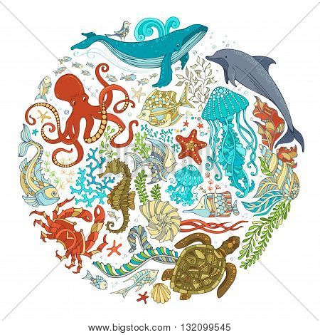 Circle Vector Set Of Cartoon Sealife Animals Over White Background.