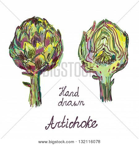 Artichoke hand drawn card set artistic design - vector illustration