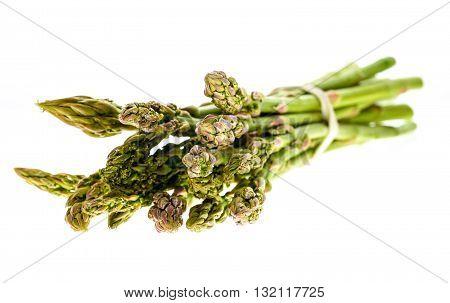 Fresh Organic Asparagus Isolated On White Background.