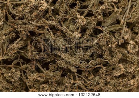Organic dry green spearmint (Mentha spicata) leaves. Macro close up background texture. Top view.