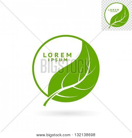 Modern abstract green round sign with leaf for logos, banners, layouts, corporate  brochures, templates and internet web sites. Vector eps10 illustration