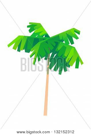 palm tree cartoon one object with green leaves