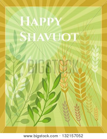 Shavuot Festival greeting or invitation card design vector template. Greeting text Happy Shavuot. Olive brunches & stalks traditional for Jewish Shavuot holiday. Layered, editable design.