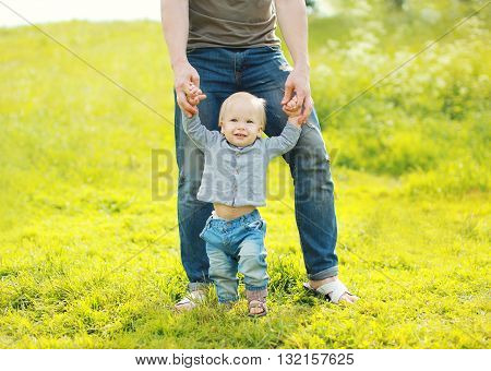 Father Holding Hands Baby Walking On Grass In Summer Day