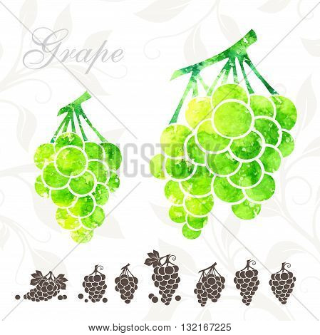 Green grape icons set. Grape illustration with watercolor texture