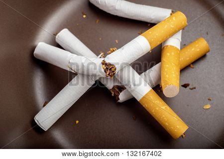 Quit Smoking - Broken Unsmoked Cigarettes In A White Ashtray With Faded Blueish Filter