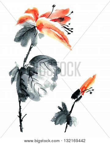 Watercolor and ink illustration of flowers and buds in style sumi-e u-sin. Oriental traditional painting