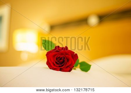 Romantic concept with rose on the bed